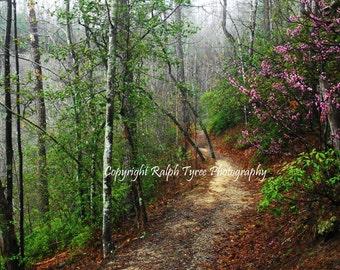 Red Bud Trail