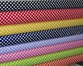 Riley Blake Small Dots Fabric Bundle