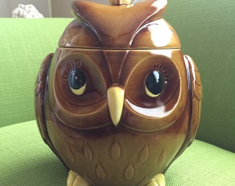 Rare Vintage Retro Norcrest Ceramic Owl Cookie Jar Excellent Condition Made in Japan