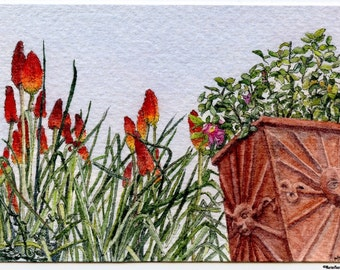 """ORIGINAL Ink and Watercolour Miniature Painting - """"Torch Lilies of Volpaia, Tuscany"""" (Chianti Region, Tuscany, Italy)"""