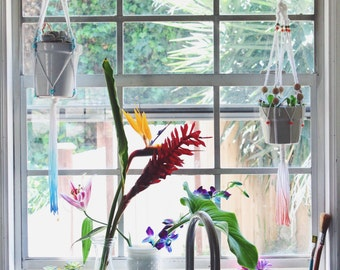 Thalia's Plant Hanger