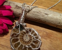 120 million years old Ammonite fossil wrapped in wire making a beautiful and unusual pendant, statement piece and talking point
