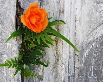 Flower in Stone