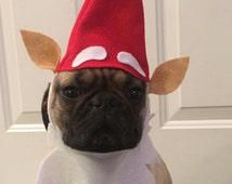 Garden Gnome Halloween Dog or Cat Costume