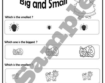 There was an old lady who swallowed a fly school worksheet activities