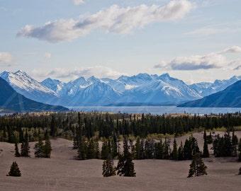 Sand Dunes of the North - Carcross Desert, Yukon