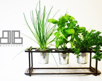 Minimalist Walnut Herb Planter