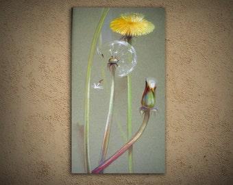 """dandelions large art painting titled, """"Pienenes"""", nature"""