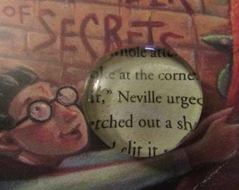 Neville Harry Potter Page Magnet