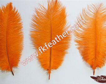 """10"""" - 12"""" Ostrich Feather"""