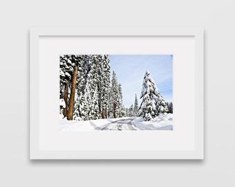 Yosemite National Park, California, United States of America Photographic Print