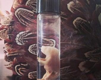 Wet Specimen Deformed Fetal Mouse in Specimen Jar Oddities