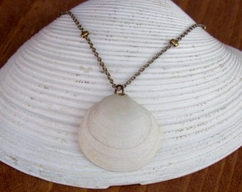 Semele Shell Necklace on Beaded Chain