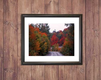 Fall Pathway Digital Photography, Digital Download, Digital Print, Wall Art