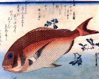 A Shoal of Fishes Japanese Red Seabream Japanese Reproduction Woodblock Print Ando Hiroshige