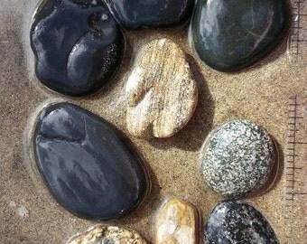 Beach Rocks, Petrified Wood, Petrified Sandstone, Black Rocks, Jasper, Bulk Wholesale Lot #BR001
