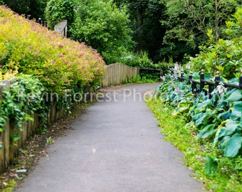 digital backdrop, Country path photo. High quality!