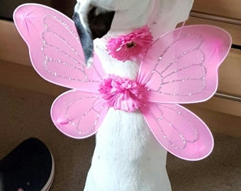 Dogs Halloween Outfit, small dogs outfit, Jack Russel, Fairy wings for Dogs, Pink Fairy Wings