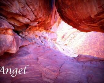 Down the Desert Rabbit Hole
