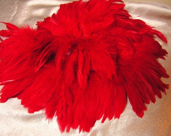 Radiant Red rooster feathers , bulk, lot, wholesale, feather supply, hair extentions