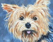 Dog Portrait, Yorkshire Terrier Oil Painting, Custom Oil Painting by artist Robin Zebley
