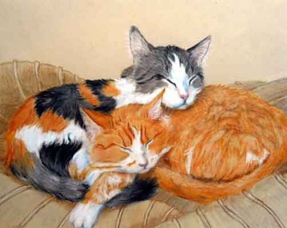"Custom Cat Portrait Drawing, 8 x 10"" Colored Pencil Pet"