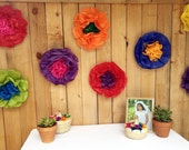 Mexican Tissue Pom Poms Flowers Paper Wedding Flower Photo Wall Fiesta Decorations - Set of 10
