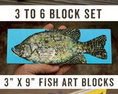 "Medium Freshwater Fish Art Block Set of 3, 4, 5 or 6- 9""x3"" Fish Wall Decor Fisherman Gift for Dad- Lake House Decor- Fish Gifts- Home Gifts"