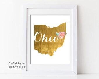 Ohio State Printable Art, Ohio Print Art, Ohio Map Printable, Faux Gold Foil, Printable Wall Art, Housewarming Gift, Ohio State Map Print 84