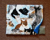 Catnip Mat and Catnip  Cats on Blue and White Refillable Reversible