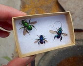 Orchid Bees Package #5 WYSIWYG