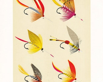 fly fishing print from an 1892 book, printable digital download no. 949