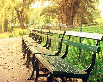 New York Photo // Central Park Benches Photo // Home Decor Wall Art // Fine Art Travel Photography
