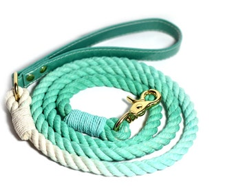 Ombre Rope Dog Leash with Teal leather handle - Seafoam Green Rope Leash