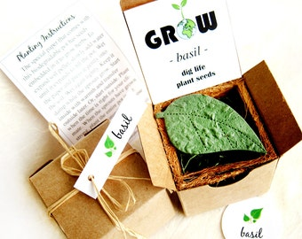 Indoor Herb Seed Garden Planting Kit - Desktop Garden Planter - Housewarming Gift - plantable pots - Basil Dill and more