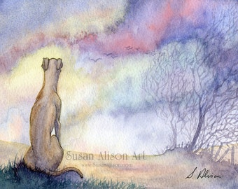 Whippet greyhound dog print 5x7 8x10 11x14 dawn landscape lurcher sighthound watching sunrise view from a Susan Alison watercolor painting