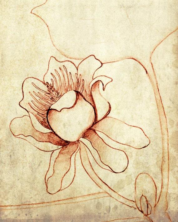 Botanical art print illustration archival art print rust brown wall art 8x10 'Tulip Tree'