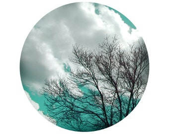 Aqua Tree Photography, Sky, Clouds, White, Fall, Colorful, Forest, Woods, Blue, Circle, Round Image - 8x8 inch Print - If you l