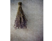 Lavender Print, Rustic Decor,  Still Life Photography, Floral Art Print,  Country Chic Decor, Dried Herb Photo