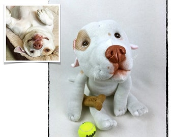 Custom Stuffed Animal - Pet Lover Gifts - Dog Gift - Cat Gift - Pet Replica - Plush Pet Portrait -MARCH 2017 Delivery