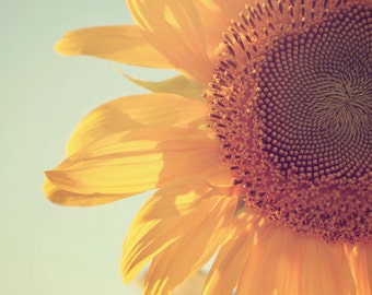 Nature Photography, Flower Photograph, Sunflower Photo, Autumn Home Decor, Warm Colors, Fall, Farmhouse, Yellow, Orange, Rustic Art, Macro
