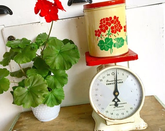 Weights and Measures... Vintage American Family Scale Kitchen Scale Red Farmhouse Decor Rustic