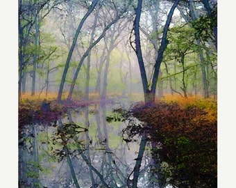 On Sale Autumn, Forest, Water, Pond, Trees, Landscape, Nature Photograph, Fine Art Painted Photograph, Giclee Print