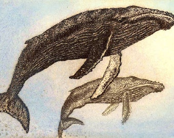 Humpback and calf moosup Valley Designs giclee print