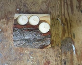 Natural live edge Maple wood Tea Light Holder (1)