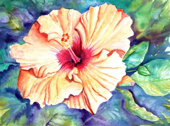hibiscus paintings flower watercolor art tropical flowers