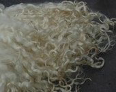 Very Long Wensleydale Locks Natural White 50grams