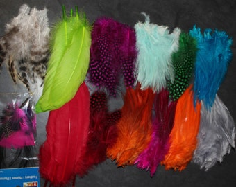 220 Assorted Craft Feathers - 12 Colors
