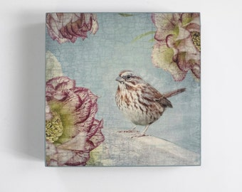 Song Sparrow with Pink Flowers - Ready to Hang Wooden Panel -  Fine Art Image on  5-inch Square, Birch Panel, Home Decor, Bird Lover