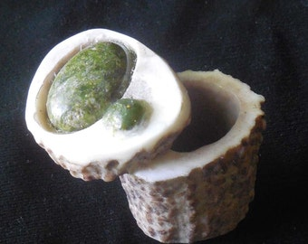 Unakite Carved Shed Elk Antler Box Large Size Cruelty Free Antler Gemstone Semiprecious Stone Inlay OlyTeam